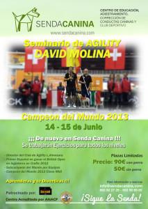 Seminario Agility - David Molina