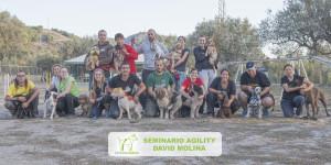 Seminario Agility David Molina - Senda Canina