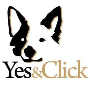 Yes and Click
